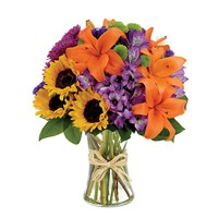 Rural Route (BF166-11KM)